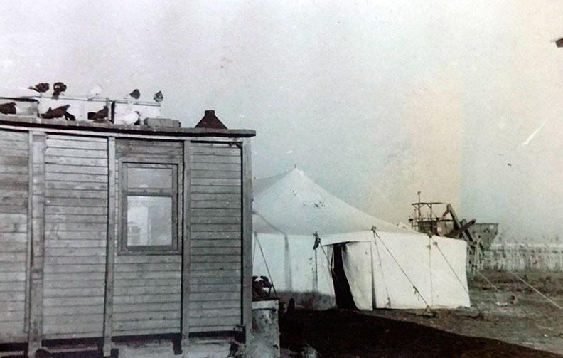 Палатки журфака на целине
