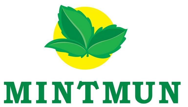 Mintmun: глобальные проблемы мира глазами молодёжи