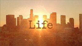 Месяц фотографии: фотолента нашей жизни
