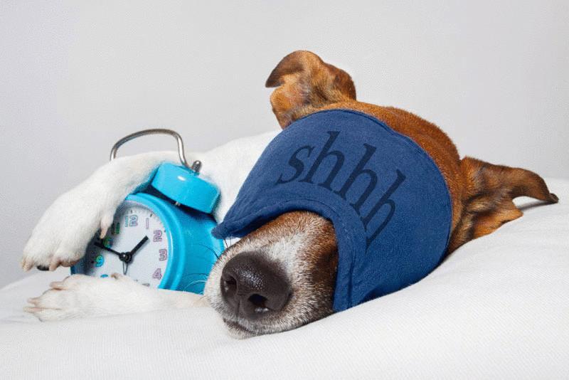 Что делать, если надо отдохнуть, но никак не получается?