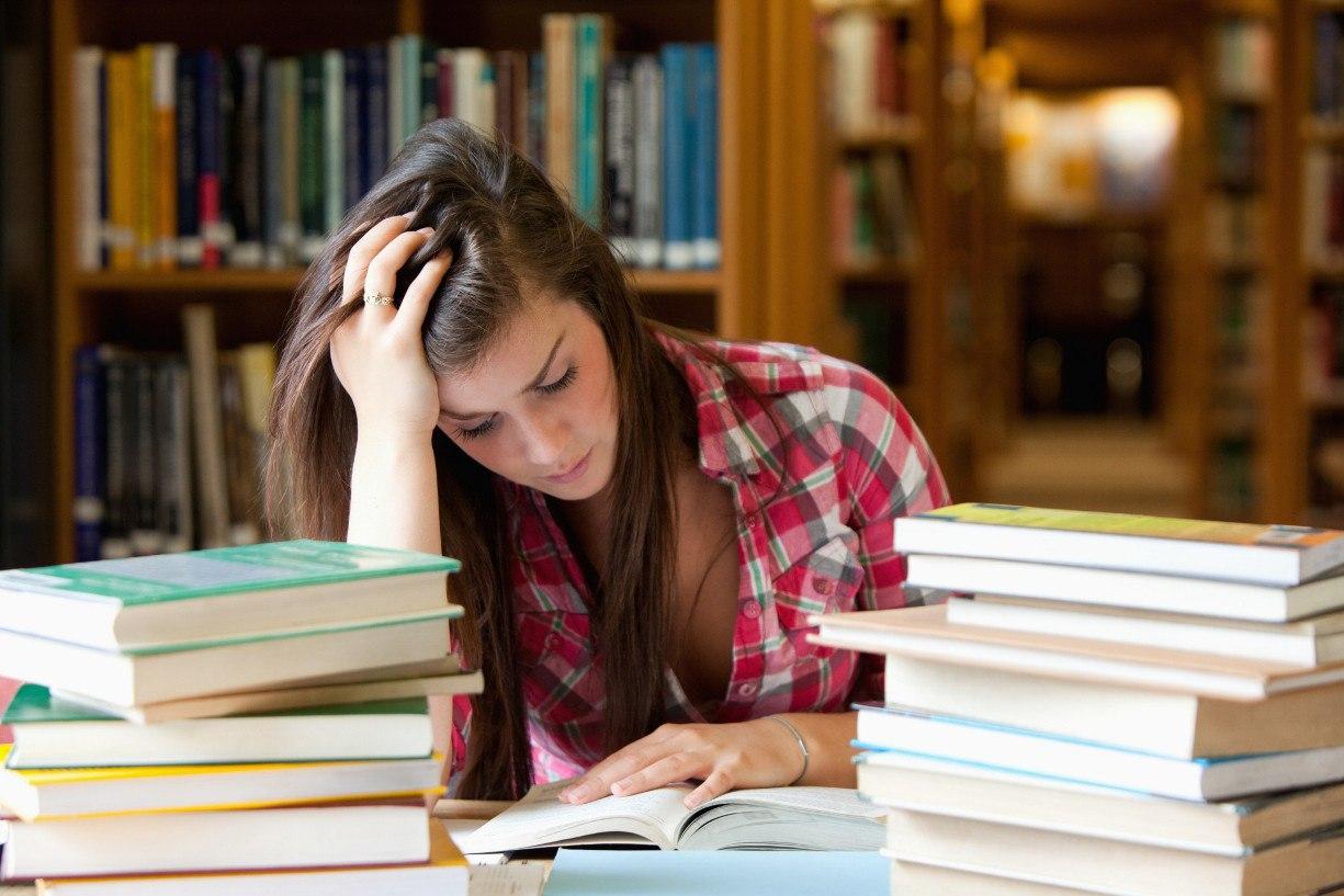 Новый год за учебниками и зубрёжкой