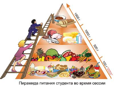 Мнение: белорусские студенты питаются булочками и сосисками — денег хватает, просто лень от компьютера оторваться 14