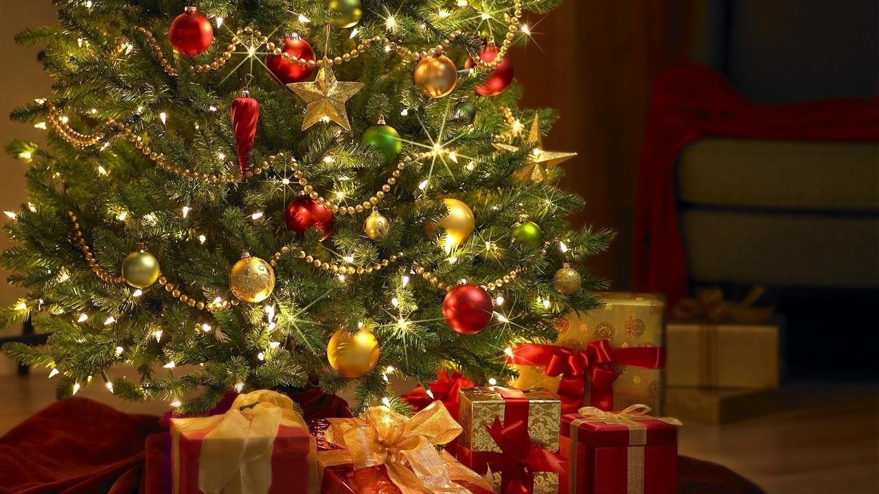 В Беларуси Новый год будут праздновать в течение 4 выходных 14