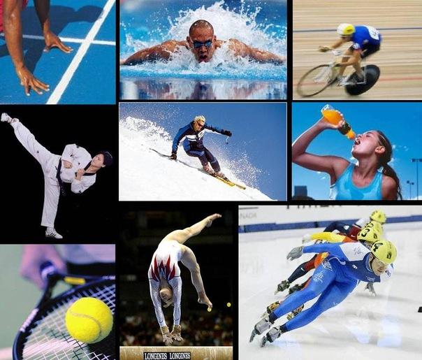 Сила спорта 14