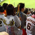 «Торакичи» – фанаты бейсбольного тигра 16
