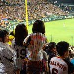 «Торакичи» – фанаты бейсбольного тигра 17