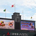 «Торакичи» – фанаты бейсбольного тигра 33