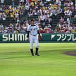 «Торакичи» – фанаты бейсбольного тигра 20
