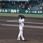 «Торакичи» – фанаты бейсбольного тигра 21