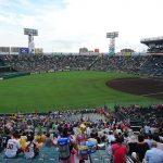 «Торакичи» – фанаты бейсбольного тигра 25