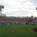 «Торакичи» – фанаты бейсбольного тигра 29