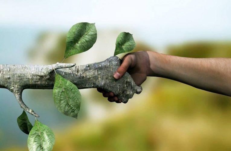 Природа – творец всех творцов