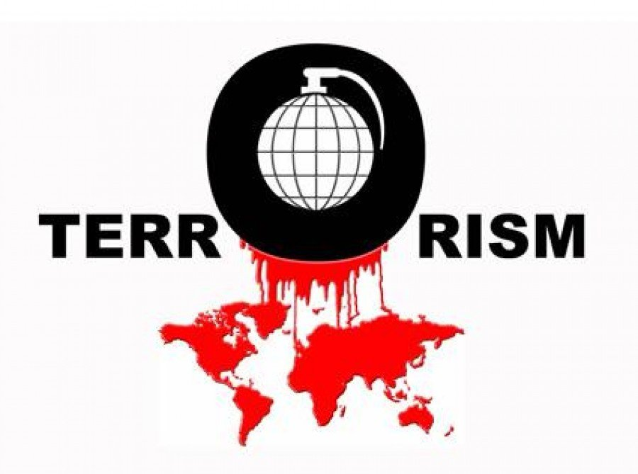 Борьба с терроризмом и использование информационных технологий 11