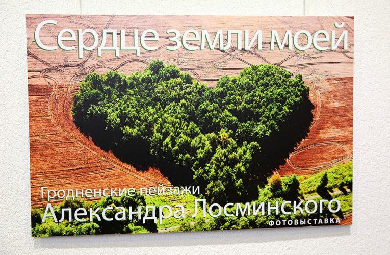 Гродненские пейзажи в зимнем Минске