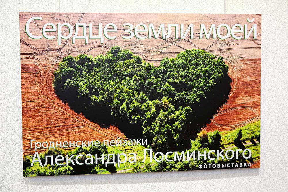 Гродненские пейзажи в зимнем Минске 15