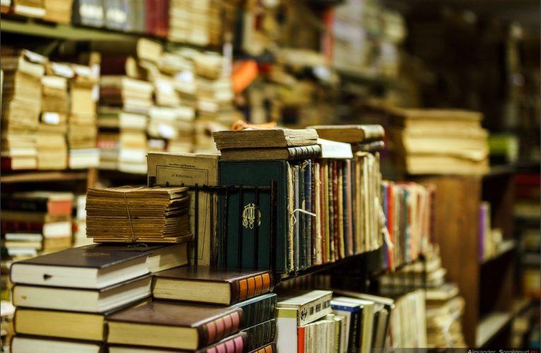 «Мы делаем книги свободными…»