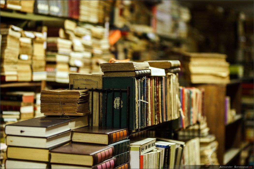 «Мы делаем книги свободными…» 15