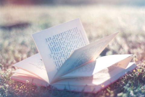 Поговорим о поэзии 14