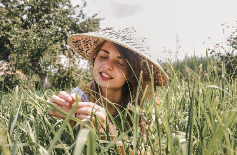 Блиц-опрос или анкета из дневничка для девочек Юли Цурко — замредактора Web-СМИ и одного из создателей Медиацентра