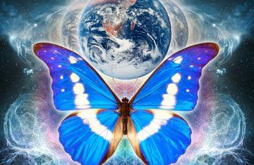 Эффект бабочки 16