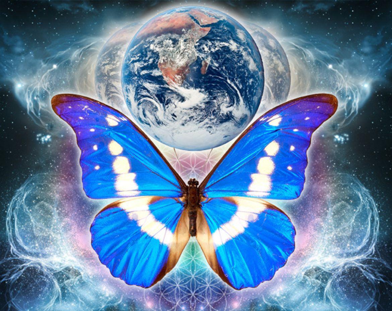 Эффект бабочки 5