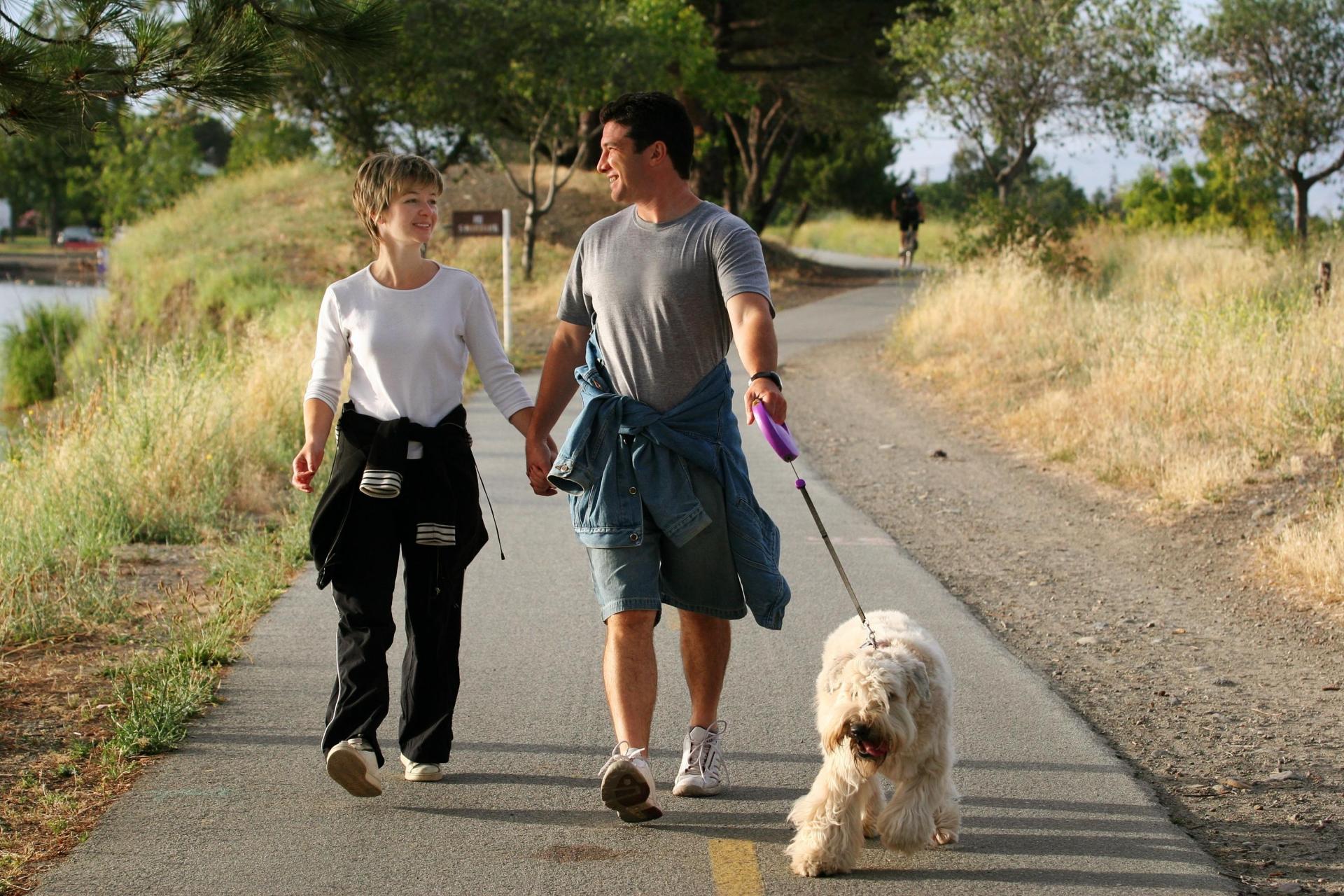 Почему студенты выбирают пешие прогулки и как это помогает здоровью 16
