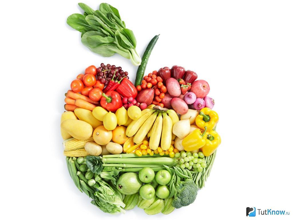 Типы питания в современном мире и их особенности 18