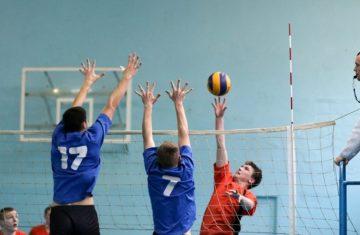 Топ-5 видов спорта моей школы 18