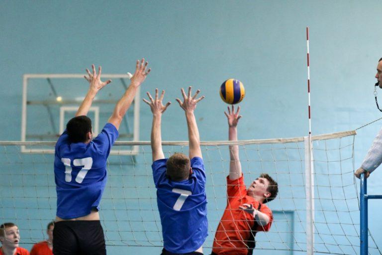 Топ-5 видов спорта моей школы 14
