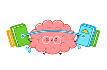 Запомнить всё: как улучшить память и для чего это вообще надо? 56